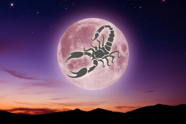 SUPPORTING ENERGETIC JOURNAL SUPER NEW MOON IN SCORPIO 15/11/2020